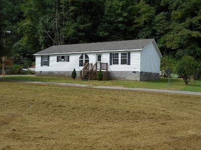 Peytona west virginia wv fsbo homes for sale peytona for Boone cabins for sale